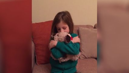 Parents of the year front runners bring their daughters stuffed animal to life