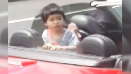 Man films kid standing unrestrained in a convertible on an Auckland motorway