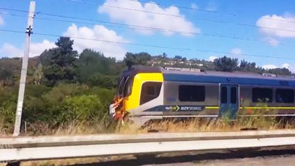 WATCH: Mystery kiwi rides on the back of a train at full speed
