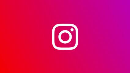 Photo / Instagram